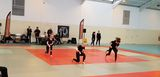 photo coupedelabaie-bodykarate-2018-009.jpg